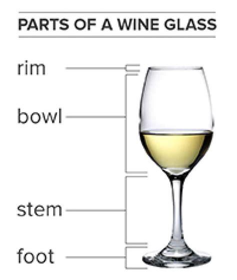 Wine Glass Vs Chagne Glass Wine Glass Vs Chagne Glass 28 Images Cantina Tessari