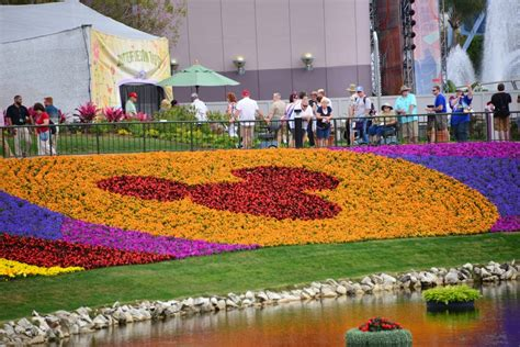 flowers and gardens 2017 epcot flower and garden festival flower garden epcot