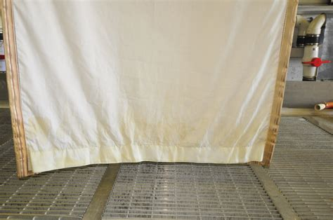 urine odor removal cat urine odor removal from drapery rug by petpeepee service
