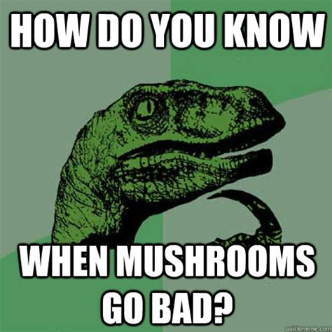 Mushroom Meme - mushroom meme 28 images game 5 fire at nyc sunday