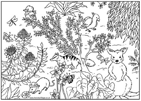 coloring books for adults australia australia coloring page coloring home