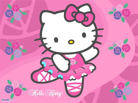 kitty kitty wallpaper 181852 fanpop