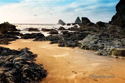 tide brookings oregon 24 best brookings oregon images on pinterest brookings