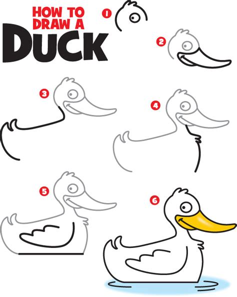 How To Draw Ducks how to draw a duck kid scoop