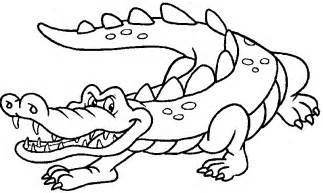 what color are crocodiles crocodile color pages pictures