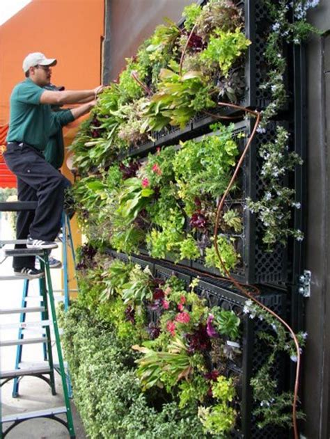 Vertical Edible Garden 17 Best Ideas About Milk Crates On Cat Crate