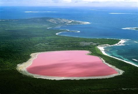 pink lake australia australia s pink like gum lake now i