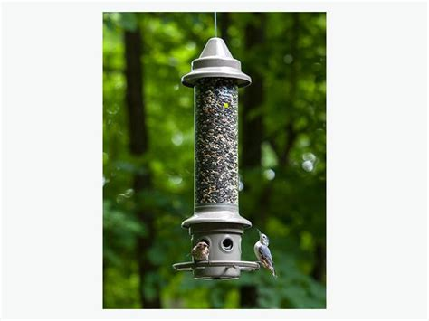 wild birds unlimited eliminator squirrel proof feeder