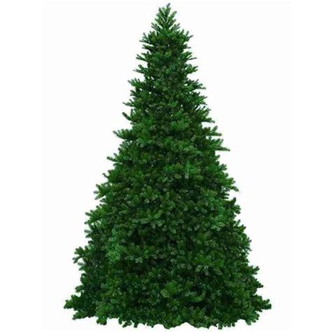 pine or plastic big decisions on the christmas tree lot