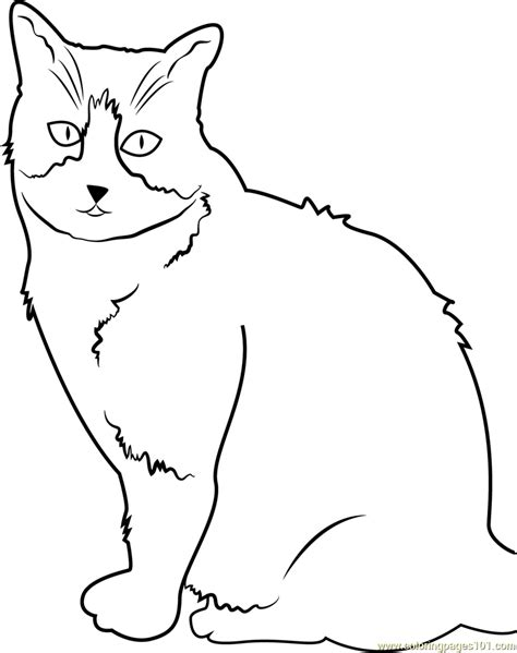 scary cats coloring pages cat look scary coloring page free cat coloring pages