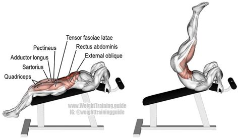 incline leg and hip raise a compound exercise target rectus abdominis