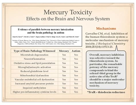Detox Mercury From Your Brain by Detoxification