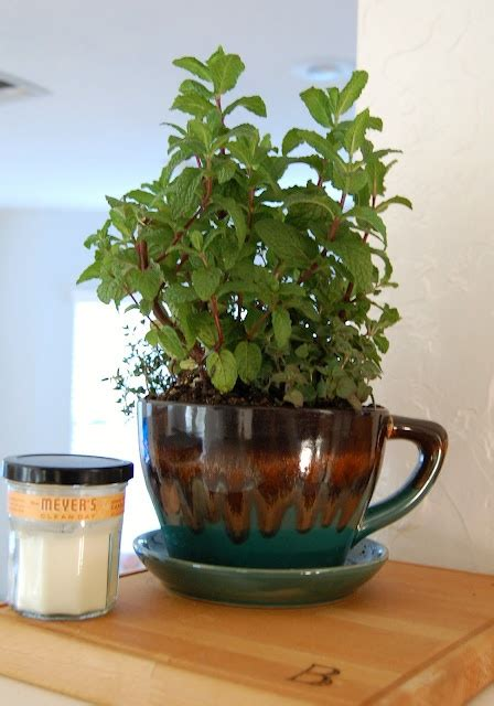 14 best images about herb planters on pinterest herb