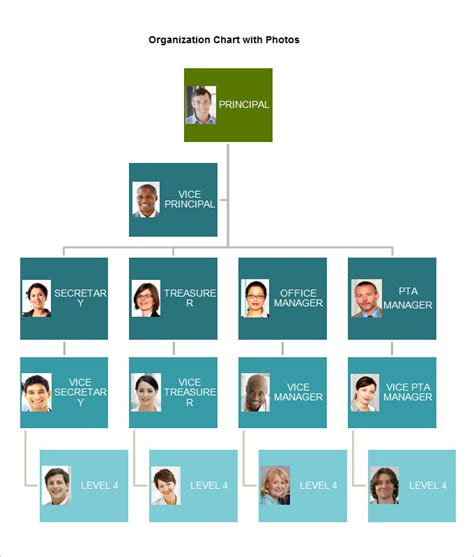 Free Templates For Organizational Charts by Free Organizational Chart Template 5 Word Pdf Documents