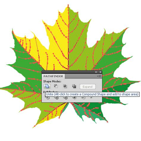 illustrator tutorial leaf how to draw a fall leaf using adobe illustrator