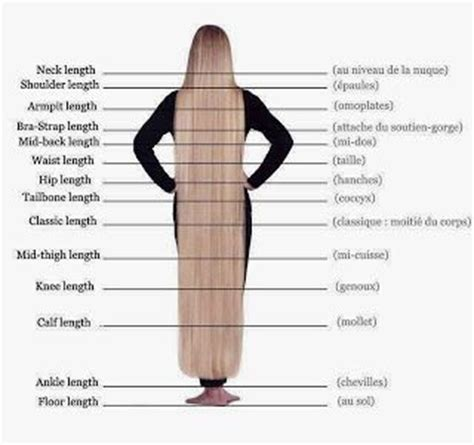 what is a hair length for 47 year olds 17 best ideas about hair length chart on pinterest