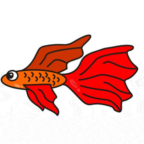 Fighting Fish Clipart