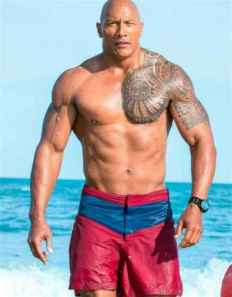 rock bodi best 25 the rock dwayne johnson ideas on dwayne johnson the rock and