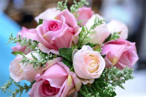fiore per chiedere scusa tutti i fiori per chiedere scusa floraqueen italia