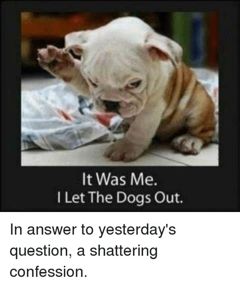 i let my dog eat me out confessions funny let the dogs out memes of 2017 on sizzle
