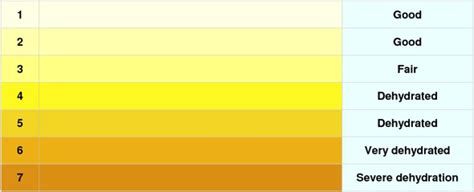 What Color Should Urine Be If Detoxing Mercury by Practicesurvival Health Urine Color Chart