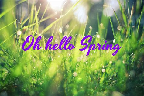 spring start sunhealers nurture the body free your soul