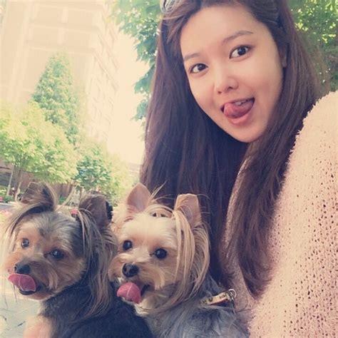 film anjing paling sedih taeyeon girls generation 6 anjing cute bintang k pop