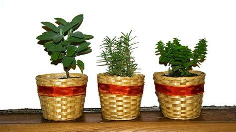 erbe aromatiche in cucina erbe aromatiche in cucina regine della tavola italiana