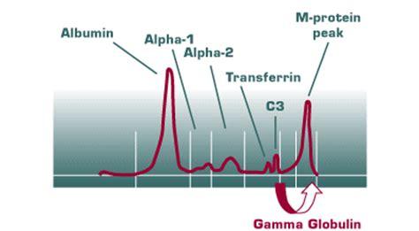 m protein definition figure 3 immunoglobulin free light chain assay a