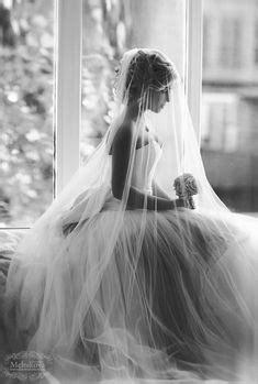 1005 Best Veils images in 2019   Bridal veils, Wedding veils, Alon livne wedding dresses
