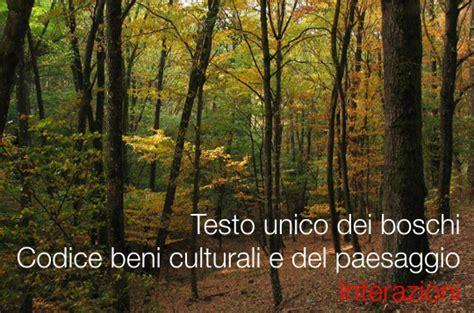testo unico beni culturali testo unico boschi e codice beni culturali e paesaggio