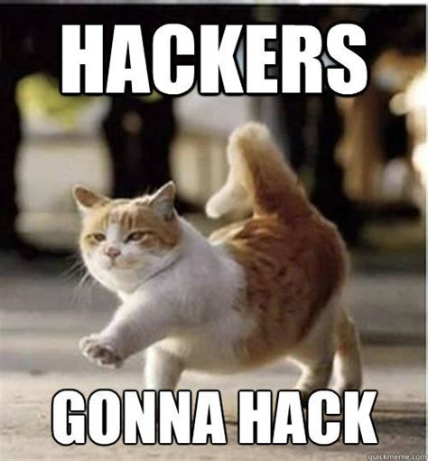 Meme Hack - image 225834 hackers gonna hack know your meme