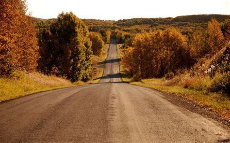 Landscape Road Pictures Landscape Near The Road Wallpapers And Images Wallpapers