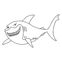 great white shark coloring page animals town animals