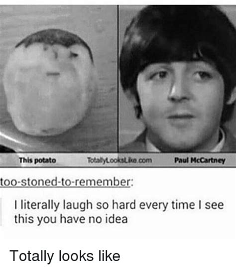 it had to be you an absolutely laugh out loud novel books 25 best memes about paul mccartney paul mccartney memes