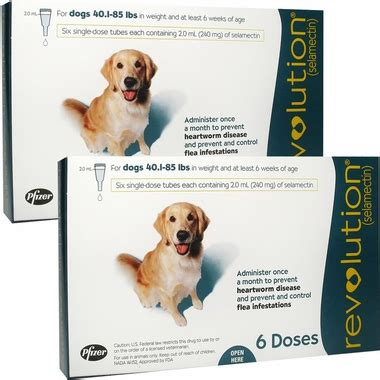 revolution for dogs 5 10 lbs revolution for dogs 40 1 85 lbs 12 mnth