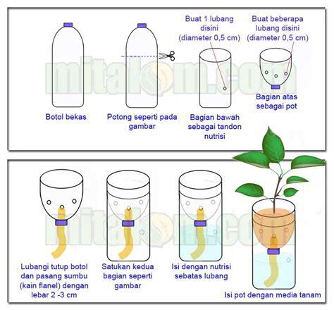 membuat hidroponik sistem wick tutorial lengkap menanam hidroponik dengan botol bekas