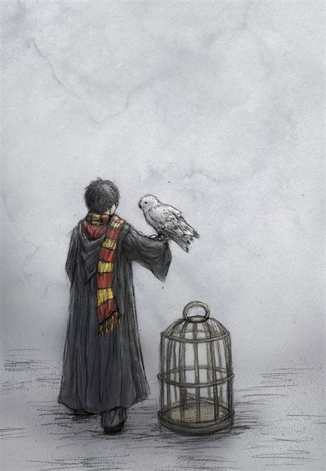 Owl Wallpaperhard Caseiphone Casesmua Hp 141 best harry potter ideas images on ideas harry potter tattoos and