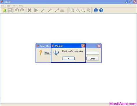 in paint inpaint full version free download with serial number