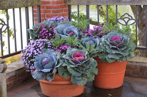 Front Porch Flower Planter Ideas 33 Front Porch Flower Front Porch Planter Ideas