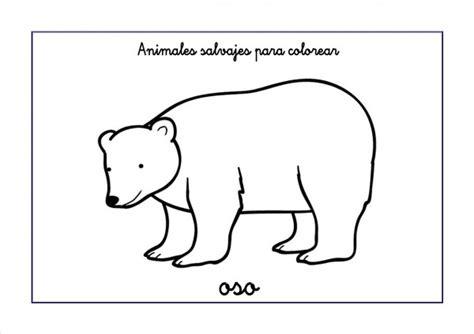 imagenes de animales omnivoros para imprimir dibujos de osos salvajes para pintar colorear im 225 genes