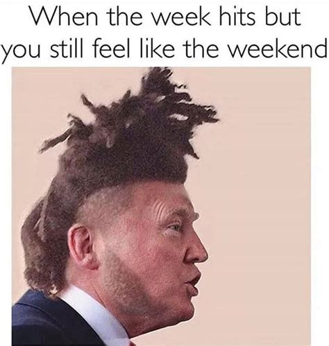 The Weeknd Hair Meme - 130 best images about trump memes on pinterest donald o