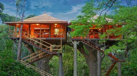 team tree house 5 amazing treehouse getaways in kerala