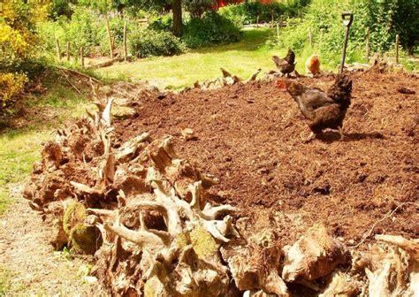 DIY hugelkultur: how to build raised permaculture garden