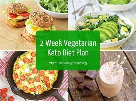 the vegetarian ketogenic diet 30 recipes for weight loss books 2 week vegetarian keto diet plan the ketodiet