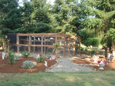 backyard bird aviary outdoor aviary for parrots farm ideas outdoor spaces