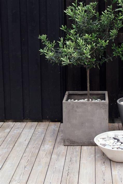 garten nürnberg pflanzentopf sichtschutz die neueste innovation der