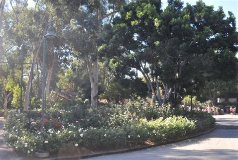 Griffith Park Botanical Gardens Bcx News Los Angeles Zoo