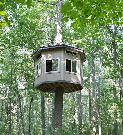 how to build a tree house impressive tree house building plans 9 how to build tree house smalltowndjs com