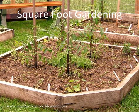 square foot garden layout maple grove square foot and vertical gardening